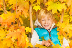 Close up view of blond boy in yellow autumn leaves Royalty Free Stock Image