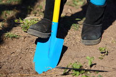 Digging Garden Royalty Free Stock Photos