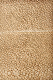 Close up view on brown leather texture Royalty Free Stock Image