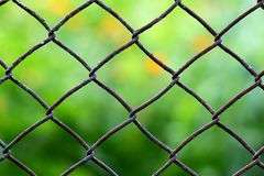Close-up view of a chain link fence with mowed green field blurr Stock Photo