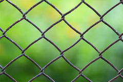 Close-up view of a chain link fence with mowed green field blurr Royalty Free Stock Photography