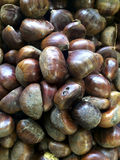 Close up view of chestnuts at a market Stock Photography