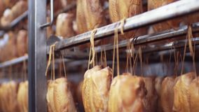 Close up view of the chickens being smoked in the automatic china smoking machine. Junk food, tasty products. Manufacturing equipment, delicious traditions stock video footage