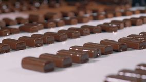 Close-up view on chocolate candies with nougat at manufacture. stock video footage
