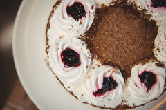 Close up view of chocolate gateau Royalty Free Stock Photos