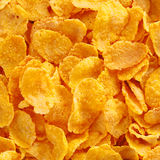 Close up view of corn flake cereal Royalty Free Stock Photo