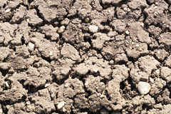 Close up view of cracked textured fertile dry soil in garden Stock Photos