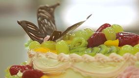 Close up view of creamy cake with fruits topping. Jellied fruits on top stock footage