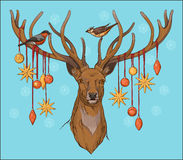 Close-up view of deer head with horns, birds. And christmas decorations Royalty Free Stock Photo