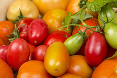 Close-up view of different fresh green and red tomatoes with waterdrops Stock Images