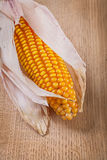 Close up view on ear of corn Royalty Free Stock Photography