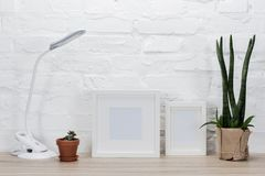 Photo frames, plants and table lamp. Close up view of empty photo frames, plants in flowerpots and table lamp on wooden surface stock photography