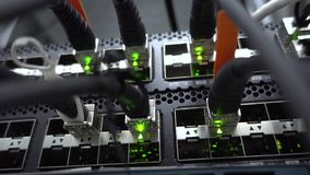 Close-up view of ethernet cables wired to router.  stock footage