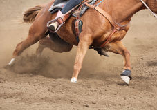 A close up view of a fast running horse and flying dirt. A horse galloping and skidding while kicking up dirt Stock Images