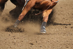 A close up view of a fast running horse and flying dirt. A horse galloping and skidding while kicking up dirt Stock Photography