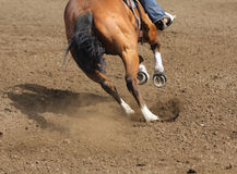 A close up view of a fast running horse and flying dirt. A horse galloping and skidding while kicking up dirt Stock Photo