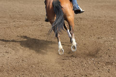 A close up view of a fast running horse and flying dirt. A horse galloping and skidding while kicking up dirt Stock Photos