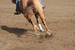 A close up view of a fast running horse and flying dirt. A horse galloping and skidding while kicking up dirt Royalty Free Stock Photo
