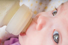 Close up view on feeding little baby with milk formula in bottle Stock Image