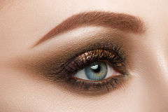 Close-up view of female blue eye with beautiful make-up. Perfect Make-up closeup Stock Photos
