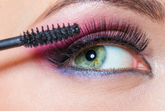 Close-up view of female eye and brush applying mascara Royalty Free Stock Image