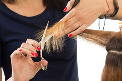 Close up view of female hairdresser hands cutting hair tips Stock Images