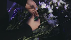 Close-up view of female hands cutting the flowers from branch with secateurs. Florist making bouquet from blooms. stock footage