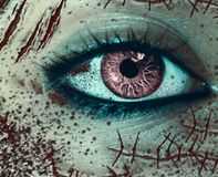 Close-up view of female`s horror eye with many scars on the face stock photos