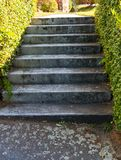 A Flight Of Stairs royalty free stock photos