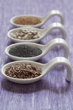 Close-up view of four different variety of Organic Seeds Royalty Free Stock Images