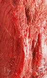 Close-up view of four rump steaks Stock Image