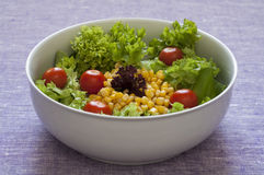 Close-up view of fresh organic mixed salad Royalty Free Stock Photography