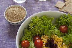 Close-up view of fresh organic mixed salad with gomasio Royalty Free Stock Images