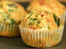 Freshly baked savoury muffins with cheddar, spinach and bell pepper. Close-up view of freshly baked savory muffins with cheddar, spinach and bell pepper Royalty Free Stock Image