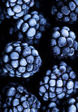 Close up view on frozen Blackberry fruits a black stone table. Food background Stock Photography