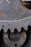 Close up view of gears from old mechanism Stock Image