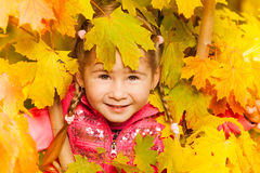 Close up view of girl hiding in maple leaves Stock Image