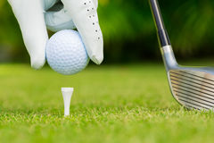 Close up view of golf ball on tee. On golf course Royalty Free Stock Image