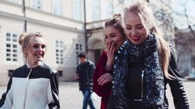 Close up view of gorgeous women wandering in the city center and communicating, smiling, laughing. Stylish outlook stock video