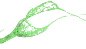 Close-up view of green color splashing. Water. royalty free illustration