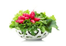 Close up view of greens and radish in white bowl royalty free stock image
