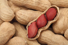 Close-up view on groundnuts Stock Photo