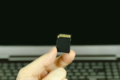 Close-up view of a hand holding a black SD memory card with a ba Royalty Free Stock Images