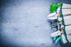 Close up view on handbag with garden tools copyspac Stock Images