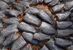 Close up View of Headless dried fish called Pla Salit on round bamboo basket royalty free stock images