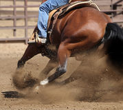 A close up view of a horse and flying dirt. A close up of a horse galloping and skidding while kicking up dirt Stock Images