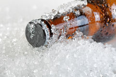 Close up view of an ice cold beer bottle neck and cap Royalty Free Stock Image
