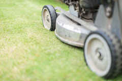Cutting green grass in yard with lawnmower. Stock Photography