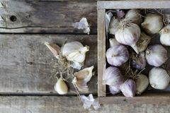 Close-up view of a lot of fresh raw garlic bulbs in wooden box royalty free stock image