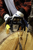 Close-up view of lumberjack with electric saw Royalty Free Stock Photography